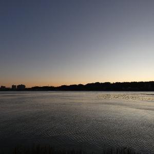 1月9日の佐鳴湖畔 強い風が吹く朝