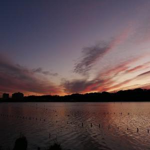 1月16日の佐鳴湖畔 美しい朝焼け