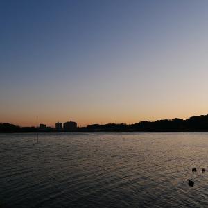 1月21日の佐鳴湖畔 冷たい西風が吹き