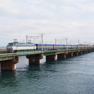 第3浜名橋梁の2059レ EF66-118 2020.1.25