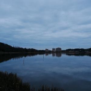 1月27日の佐鳴湖畔 暗く静かな朝