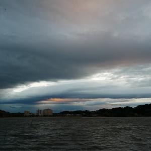 1月28日の佐鳴湖畔 強い東風が吹き込む一日
