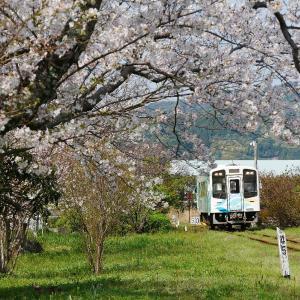 春の天浜線気賀駅のキャタライナー