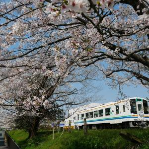 春の天竜浜名湖鉄道気賀駅の三陸鉄道応援HM付き車両