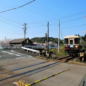 春の天竜浜名湖鉄道 西気賀駅にぶらり旅