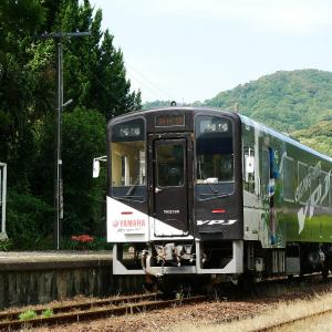 初夏の天竜浜名湖鉄道 西気賀駅の「PAS号」