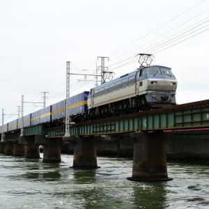 第1浜名橋梁の2059レ EF66-117   2020.6.20
