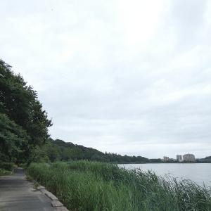 7月13日の佐鳴湖畔 雨が降る前に
