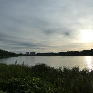 9月17日の佐鳴湖畔 少し夏に戻る
