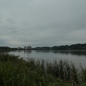 9月23日の佐鳴湖畔 台風の前に