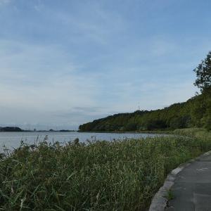 9月29日の佐鳴湖畔 涼しさを感じる一日