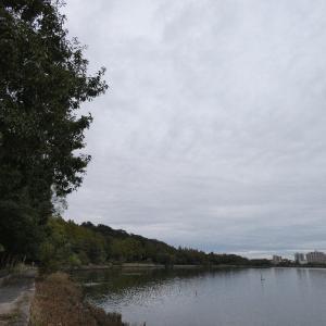 10月22日の佐鳴湖畔 暗い朝の散策