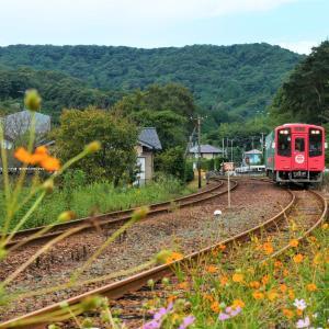 天竜浜名湖鉄道 秋の風景2