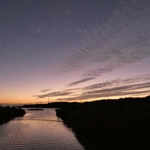 10月23日の佐鳴湖畔 夕方の散策