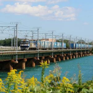 第3浜名橋梁のトヨロン EF210-161   2020.10.24