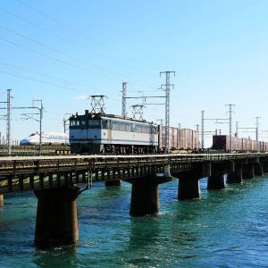 第1浜名橋梁の5087レ EF65-2094   2020.11.21