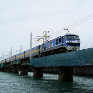 第1浜名橋梁のカンガルーライナー EF210-118    2021.6.19