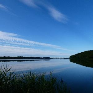 6月21日の佐鳴湖畔 水鏡の美しい朝
