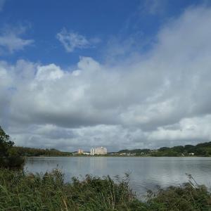 9月18日の佐鳴湖畔 台風一過
