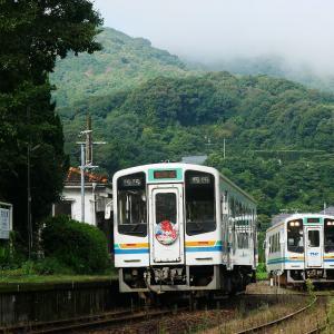 初秋の天竜浜名湖鉄道 西気賀駅の天浜線オリジナル色同士の交換風景