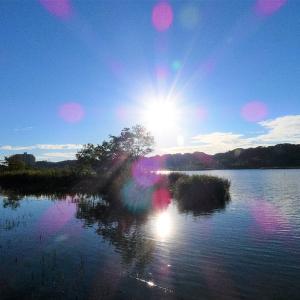 9月21日の佐鳴湖畔 眩しい朝日