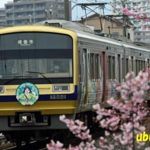 2020年2月14日 伊豆箱根鉄道 ラブライブ サンシャイン 新デザインのバースデイHM (松浦果南ちゃん)