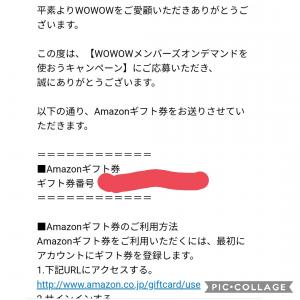 (   ゚Д゚)ハヤイ…【wowow】Amazonギフト券貰いました!