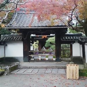 石山寺のお山が紅葉ってました。②