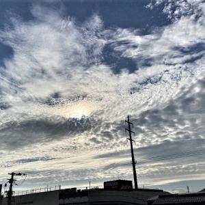 今朝、こんな雲が