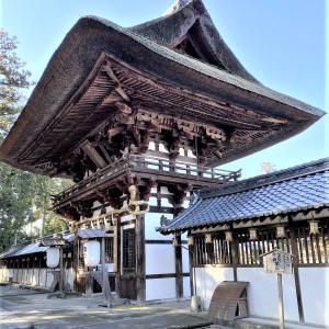 沙々貴神社へ参拝と蝋梅見学