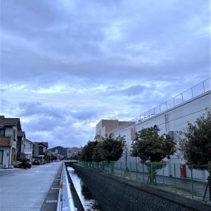 朝まで雨がパラパラと、お天とう様はボチボチと