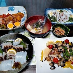 アオリイカの刺身とグレ炙りと真鯛のアクアパッツァ♪♪・・・包丁のプレゼントは、刃物屋ドットコムにお任せ下さい!!
