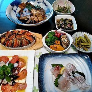 地元産真鯛の刺身と鯛のアラ煮と茄子のトマトグラタン♪♪・・・包丁のプレゼントは、刃物屋ドットコムにお任せ下さい!!