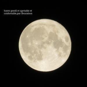 【月の暦】今日10月14日6時8分は、牡羊座の満月