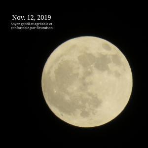 【月の暦】11月12日22時34分は、牡牛座の満月