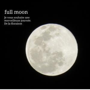 【月の暦】明日4月8日11時35分は、スーパームーン♡天秤座満月