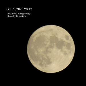 【今夜は、中秋の名月、お月見だんご♡明日6時5分は、牡羊座満月】