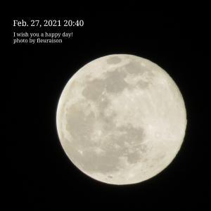【月の暦】3月29日3時48分は、てんびん座満月♡宇宙元旦を迎えて初めての満月