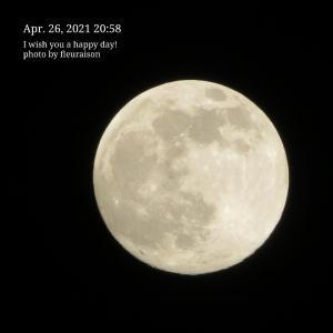 【月の暦】4月27日12時32分は、さそり座の満月