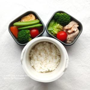 【食育日記】6/7No.1333♡初夏のお弁当作り♡豚肉とキャベツのスパイシー炒め弁当