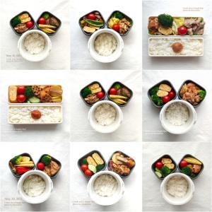 【食育日記】 6/7No.1334♡食事の傾向2♡5月のおうちごはん振り返り~お弁当・朝食編~