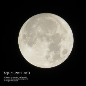 【月の暦:旧暦8月15日】8年ぶり♡中秋の名月と満月が同じ日に♡9月21日8時55分は、魚座満月