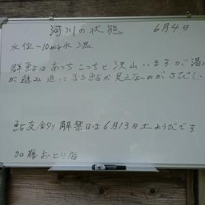 カトちゃん日記!スタートです~中部天竜川~
