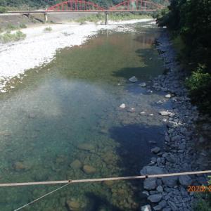 中天川、鮎の追加放流致しました