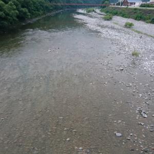 川底の汚れようが酷すぎる
