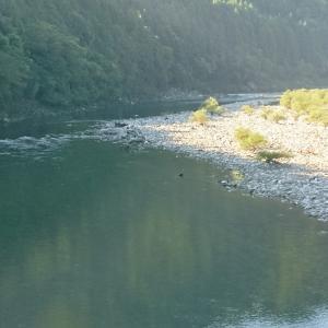 秋空の下、河川でひと遊び!