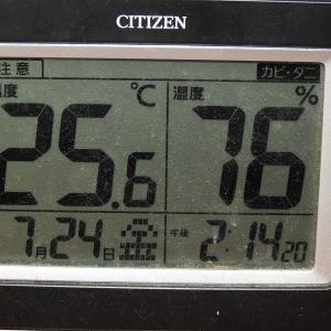 蒸し暑い埼玉