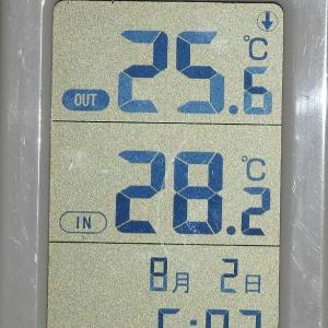 やっぱり埼玉は暑い