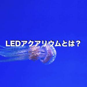 LEDアクアリウムとは?メリットや実例のご紹介