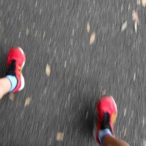快調走的Jogで20km!